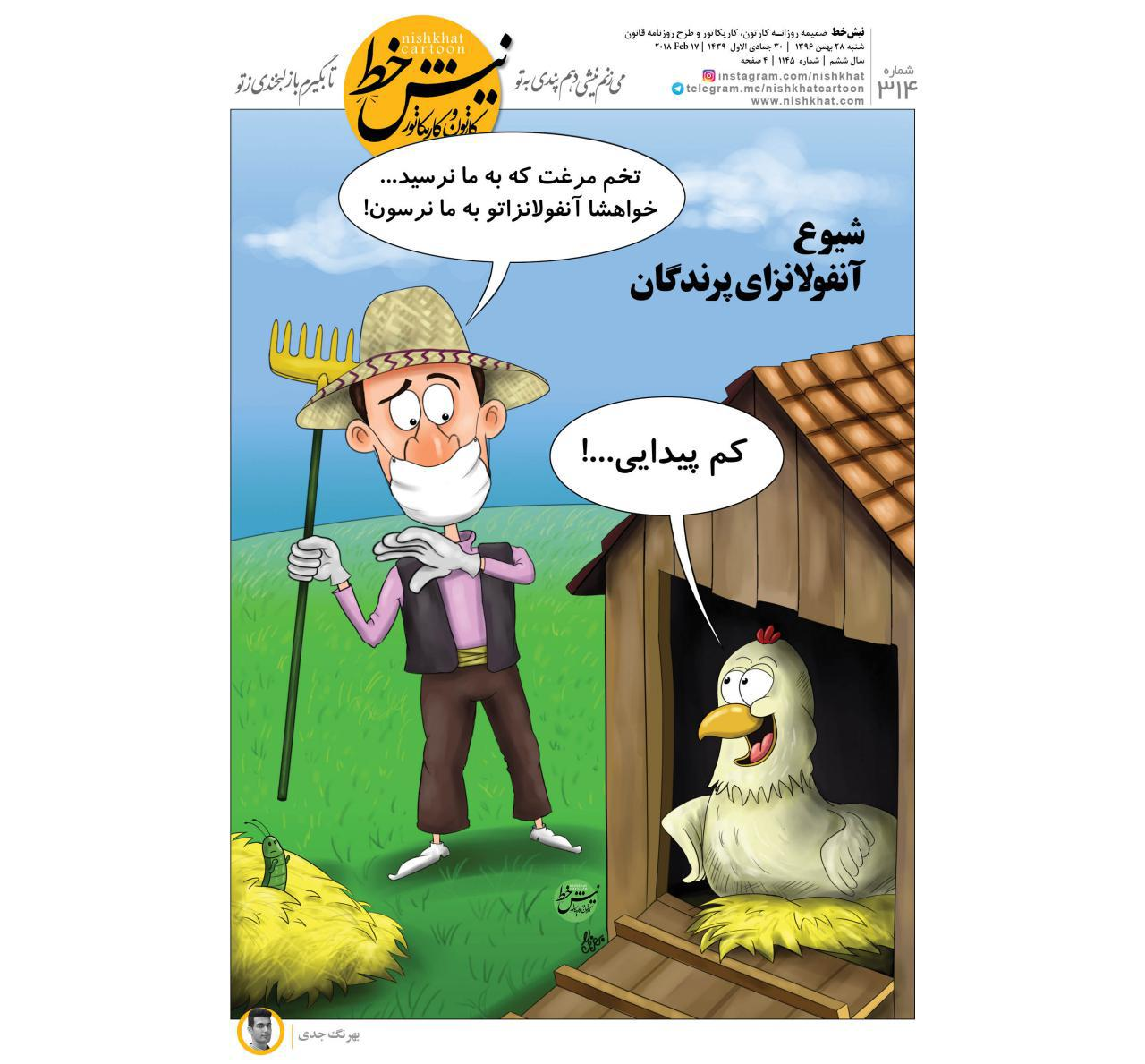نیشخط کارتون / شیوع آنفولانزای مرغی